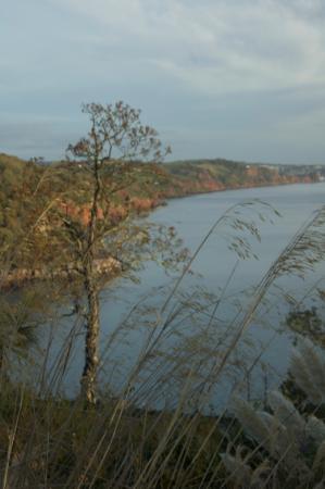 Headland View照片