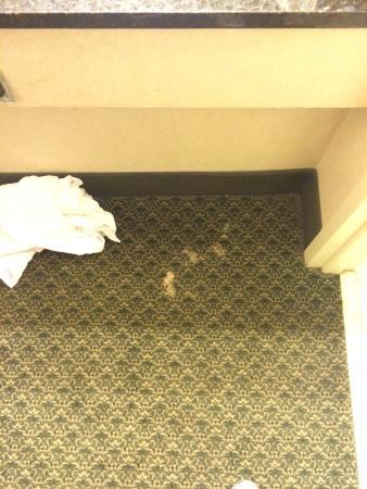 Lafayette Garden Inn & Conference Center : photo3.jpg