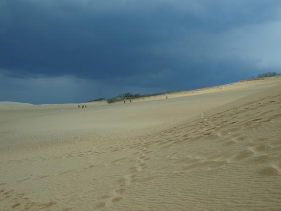 鳥取砂丘 - Picture of Tottori Sand Dunes, Tottori - TripAdvisor