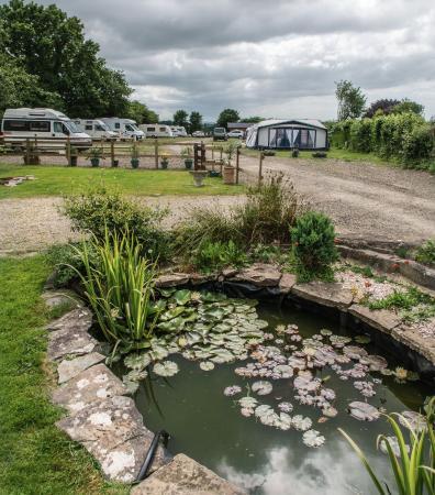 Acorn Farm Park