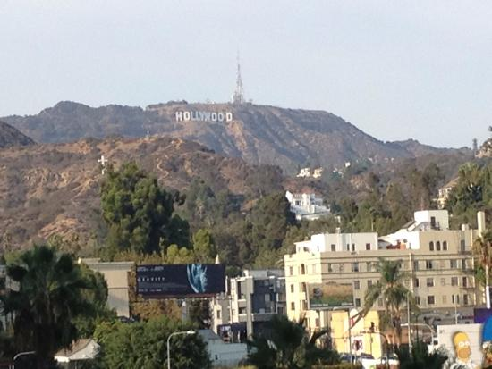 Accident in mulholland drive bild von hollywood bowl for Terrace 5 hollywood bowl