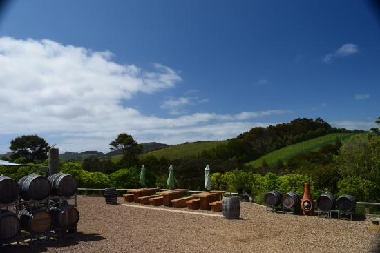 Isola Waiheke, Nuova Zelanda: Outside the vineyard tasting room and restaurant