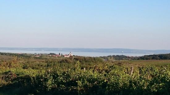 Veszprem County, Hongaria: DSC_0276_large.jpg
