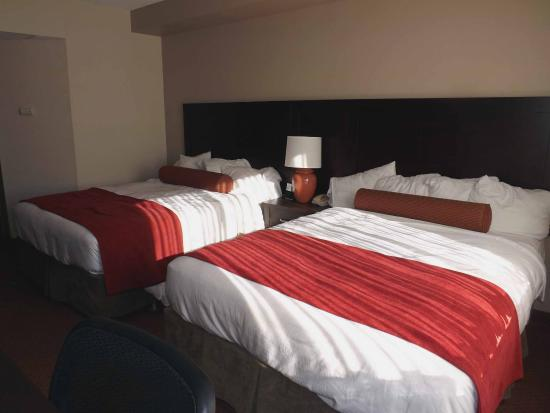 Best Western Plus Stoneridge Inn & Conference Centre : Guest Room