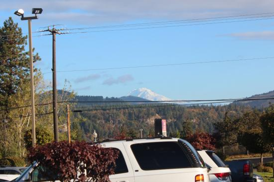 West Wind Inn & Suites: Mt. Adams in the distance, from front parking lot side of hotel.