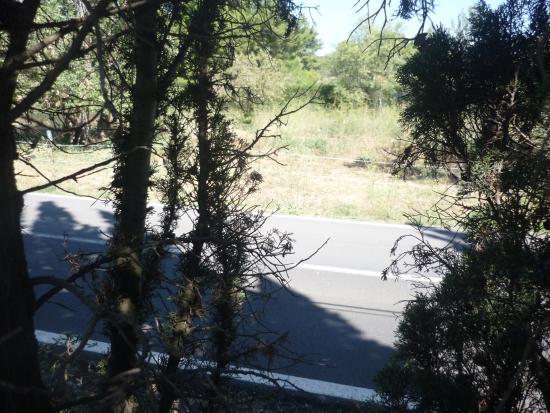 Vic-la-Gardiole, França: vue de notre mobil home