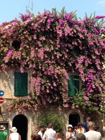 Albergo Giardino: photo1.jpg