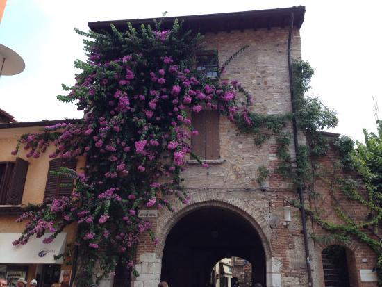 Albergo Giardino: photo2.jpg