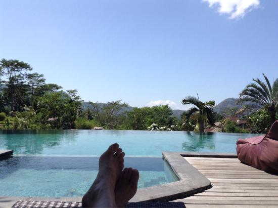 Une idée des villas, de la piscine,du SPA - Picture of Sawah Indah ...