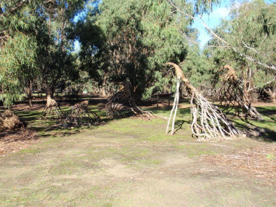 Hanson Bay, Australien: I like the branching sticks...
