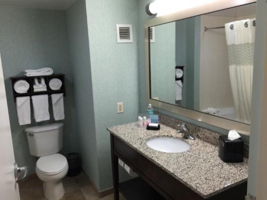 Hampton Inn Rehoboth Beach: Bathroom sink and toilet