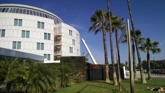 Convention center interna picture of barcelo sevilla - Garden center sevilla ...