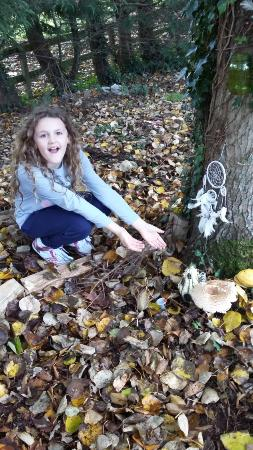 Fitzgerald's Woodlands House Hotel: Lacy  discovering  the Fairy Trail