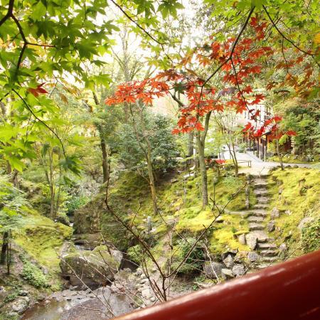 Sanaga Hot Spring
