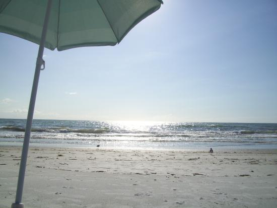 Island Paradise Cottages of Madeira Beach: 5 minutes away from the Cottages - Everything provided except umbrella!