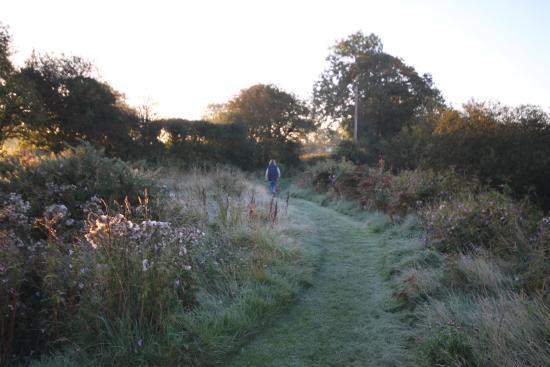 Llwyndyrys, UK: Path to the dome