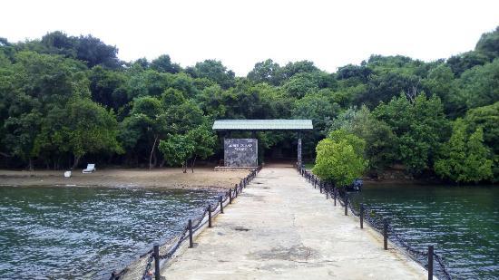 Sober Island Resort