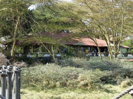 Hatari Lodge: Blick von der Plattform auf das Restaurant