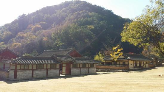 20151030_134027_large jpg - Picture of Mungyeongsaejae KBS