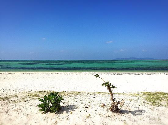 竹富岛Kondoi海滩