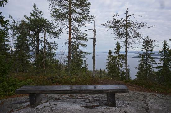Herajarvi Hiking Trail: Would you like to take a rest here?