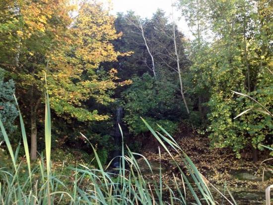 Hellidon, UK: Water garden
