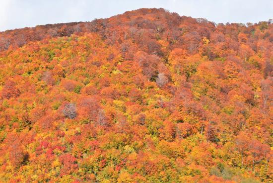 Fujisato-machi, Giappone: 近くの観光スポット(岳岱・田苗代湿原付近からの眺め)