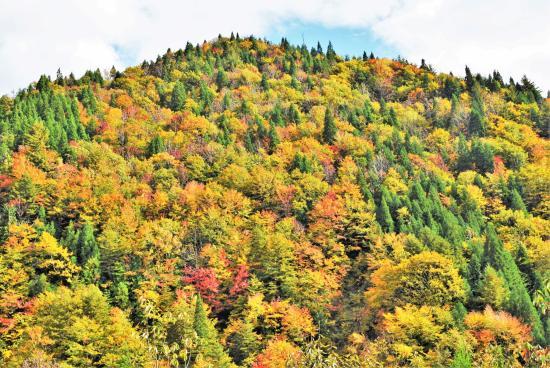Fujisato-machi, ญี่ปุ่น: 近くの観光スポット(釣瓶落峠)