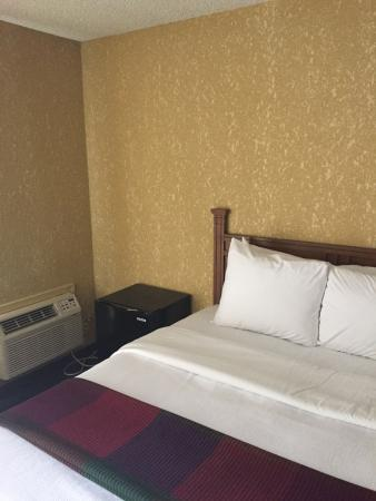Best Western Branson Inn And Conference Center: Comfy bed with mini-fridge on the side.
