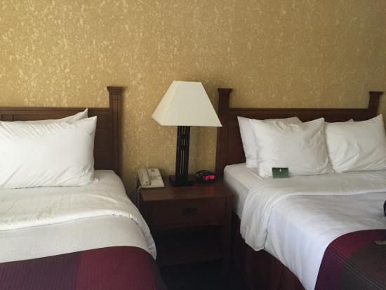 Best Western Branson Inn And Conference Center: 2 Queen beds with nice quality pillows.