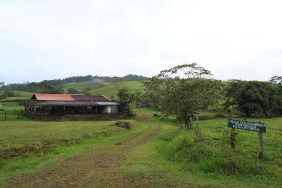 Termales del Bosque: Parc