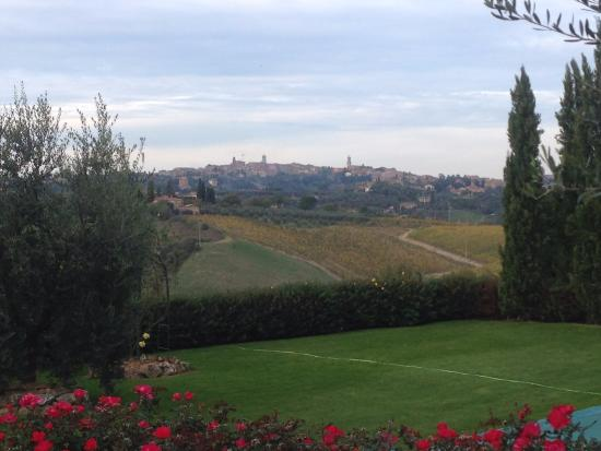 View of Sienna from backyard