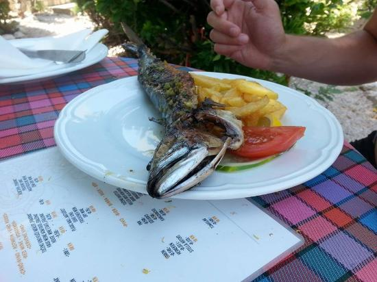 Silo, Kroatia: Lecker wars..