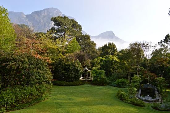 Klein Bosheuwel Guest House: Jardin - vue de la chambre
