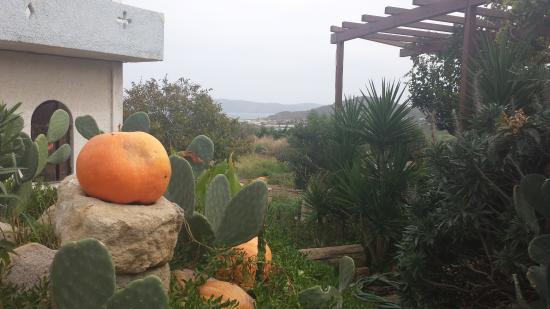 Kaliviani, Grecia: 1