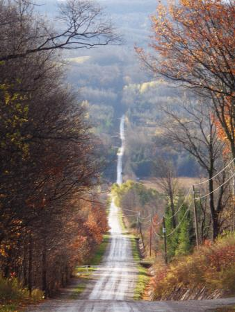 Nottawa, Canada: An impressive view of the road just before entering the Wild Apple Hill Bed and Breakfast