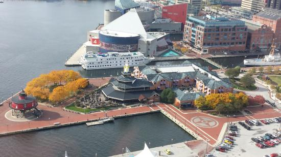 View from Above in the Harbor - Picture of Pier 5 Hotel Baltimore, Curio Collection by Hilton ...