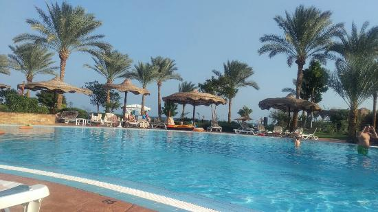 Pool - Royal Grand Sharm Hotel Photo