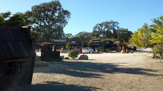 Jack Creek Farms: Day on the Farm