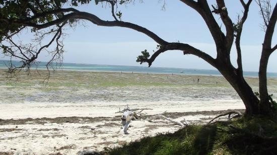 Galu Getaway : galu beach view