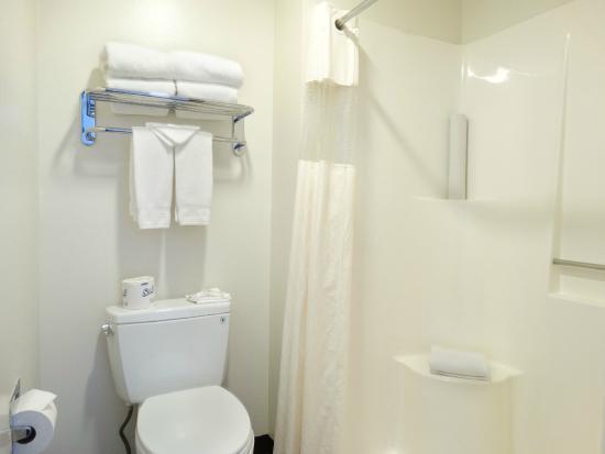 Chalet Motel: step in shower