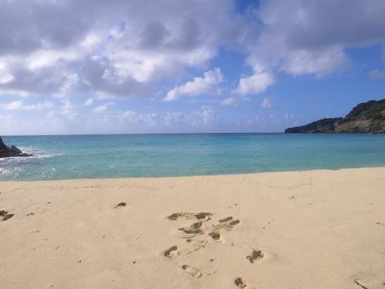 Governor Beach Picture Of St Barthelemy Caribbean
