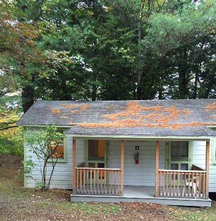 Omega Institute: The cabin