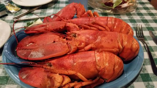 Gorham, ME: 3 Lobsters