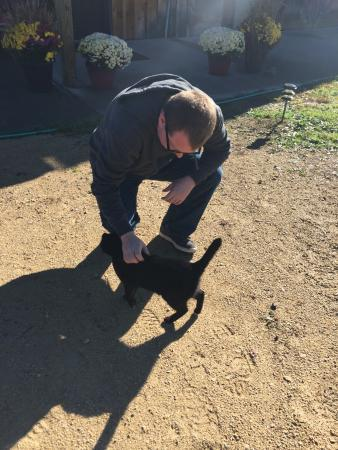 La Farge, WI: Jeff with Twinkle Toes the friendly ranch cat