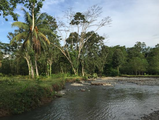 Selva Bananito Lodge: Bañándose en el río