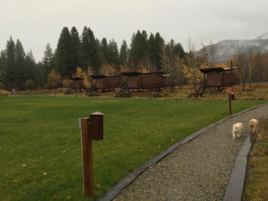 Rolling Huts: photo3.jpg