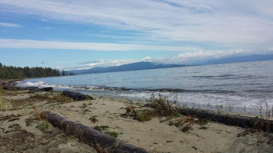 Beach Acres Resort: 20151031_112611_large.jpg