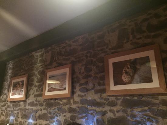 Ego Mediterranean Restaurant & Bar, Kenilworth Photo