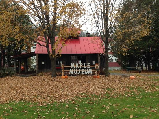 Maple Grove Farms of Vermont : Beautiful little maple museum with Halloween decorations